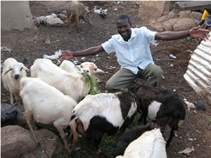 Ghana weaver Simon now owns livestock